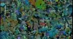 Lunar Sample 12005 Thin Section of Olivine Basalt