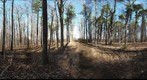 Dairy Bush GigaPan - 133 - March 14 2012