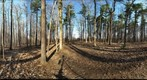 Dairy Bush GigaPan - 134 - March 21 2012