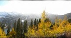 Virginia Lakes Aspens and Snow