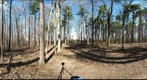 Dairy Bush GigaPan - 136 - April 04 2012