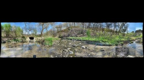 Frick Park: Human impacts on water quality