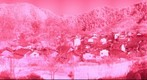 Wu Yuan - Shi Cheng (Infrared)