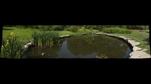 Pond at Shaw's Garden