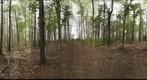 Dairy Bush GigaPan - 140 - May 02 2012
