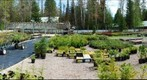 Native Plant Nursery_spring