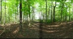 Dairy Bush GigaPan - 141 - May 09 2012 