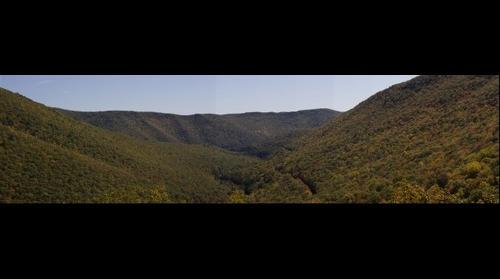 The Black Forest : Wolf Run Vista