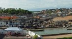 View from Elmina Castle