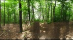 Dairy Bush GigaPan - 142 - May 16 2012 