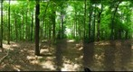 Dairy Bush GigaPan - 143 - May 23 2012