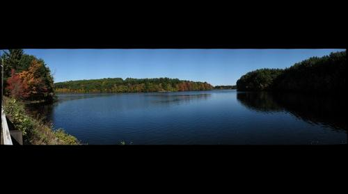 Marlboro Lake and Trees