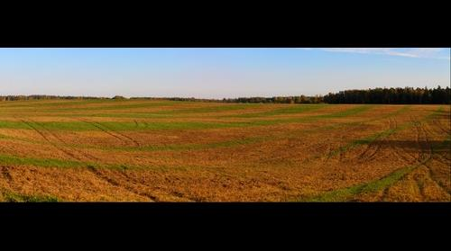 Harvested cornfield near Dzhukstes (Džūkstes) manor-house. Dobeles district. Latvia.