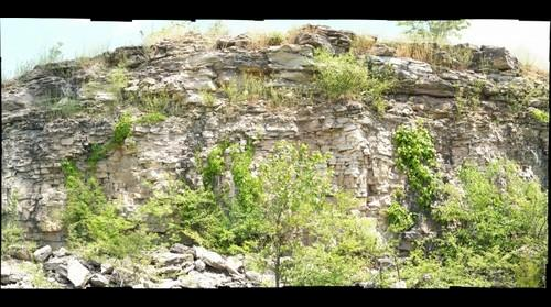 Oakes Quarry Park-Brassfield Formation