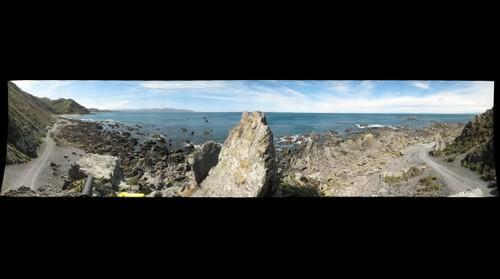 Wellington Coast, New Zealand