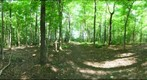 Dairy Bush GigaPan - 146 – June 13 2012
