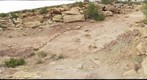 Copper Ridge Dinosaur Trackways - near Moab, Utah