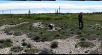 120708 - Arctic Ecology - Churchill Manitoba - Tundra Ponds - Eric and Darren