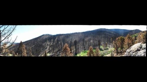 Fire Damage Near Pony, MT