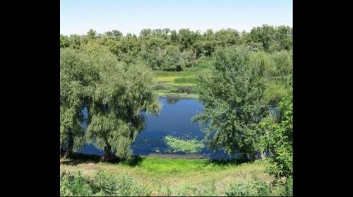 Krasnyj Jar (14) (Красный Яр, Энгельсский район, Саратовская область)