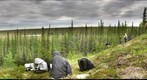 120708 - Arctic Ecology - Churchill Manitoba - Twin Lakes Moraine - Yurak