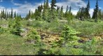 120709 - Arctic Ecology - Churchill Manitoba - Ramsay Creek - Hayley &amp; Cassie