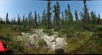 120712 - Arctic Ecology - Churchill Manitoba - Goose Creek Cabin Bog