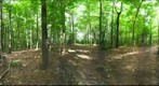 Dairy Bush GigaPan - 153 – August 01 2012
