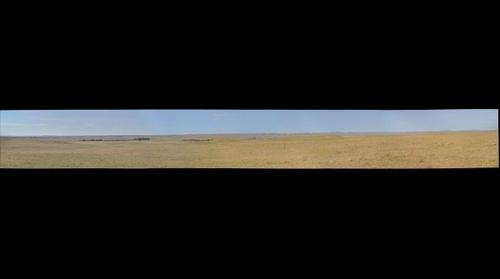 Northern Mixed Grass Prairie and Wind Farms