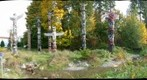 Stanley Park Totem Park