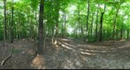 Dairy Bush GigaPan - 157 – August 30 2012