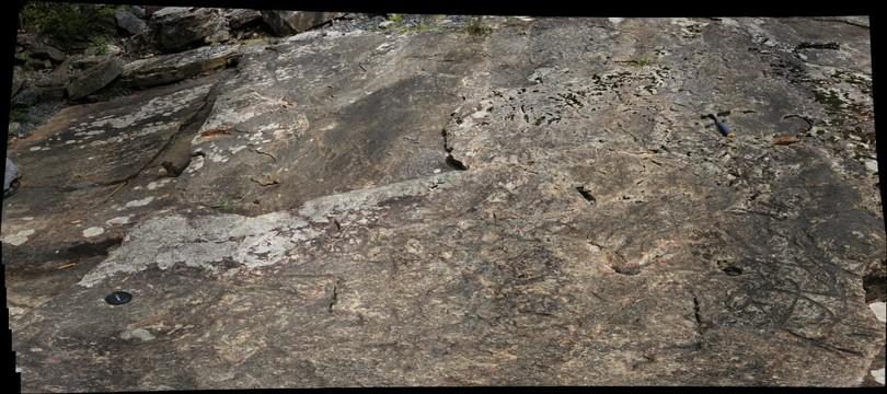 Slab of Massanutten Sandstone