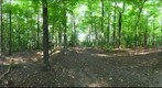 Dairy Bush GigaPan - 159 – September 12 2012