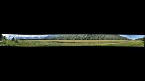 Chinitna Bay tidal marsh, Lake Clark National Park and Preserve, Alaska