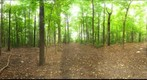 Dairy Bush GigaPan - 161  September 26 2012