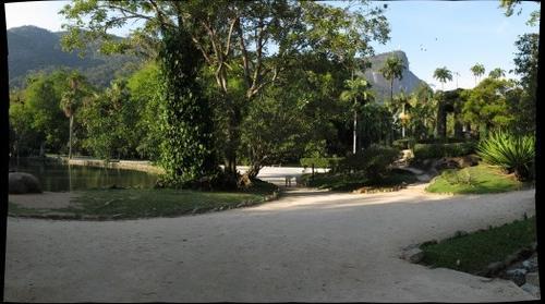Jardim Botânico do Rio de Janeiro / maracanã-pequena