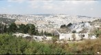 City of David