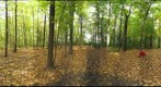 Dairy Bush GigaPan - 163  October 12 2012