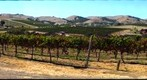 1880s Wine Country