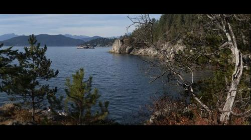 The View from Jack Pine point