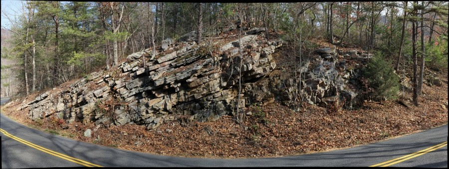 Massanutten Sandstone exposed on Fort Valley Road