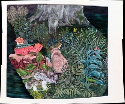 """Anita Albus """"Der Waldboden"""" (1972)"""
