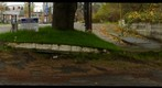 Broadway Bridge and Rose Garden 360