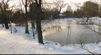 Freshwater Pond in Winter, Public Gardens, Halifax, Nova Scotia, Canada