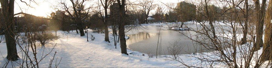 Freshwater Pond in Winter, Public Gardens, Halifax, Nova Scotia, Canada