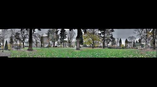 AFEHolladay Park 360deg1212