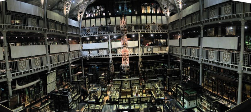 Pitt Rivers Museum of Anthropology, Oxford University, Oxford, England