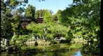 Japanese Garden in Golden Gate Park