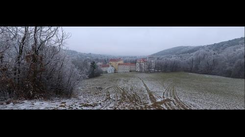 Frozen Forest at Kalksburg