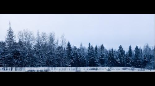 2013-01-16 Winter Wonder Land